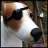 One-Eyed Jack Russell Weathervane